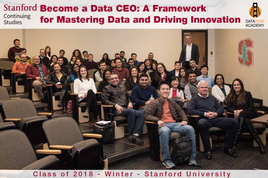 Become a Data CEO: A Framework for Mastering Data and Driving Innovation
